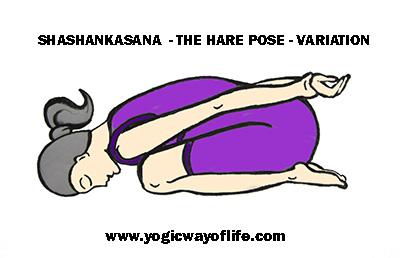 asana  the yoga postures  yogic way of life