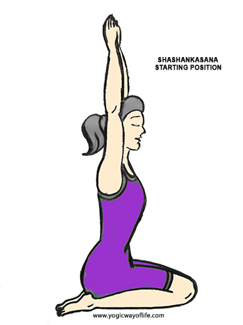 shashankasana  starting pose  yogic way of life