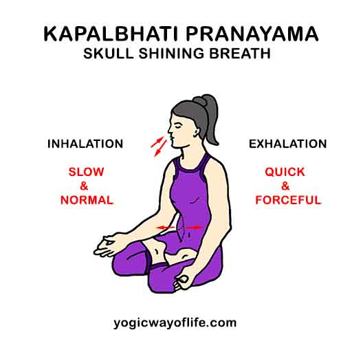 Kapalbhati Pranayama - Skull Shining Breath