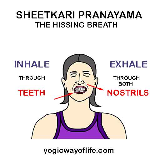 Sheetkari Pranayama - The Hissing Breath