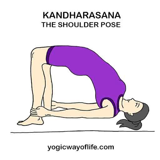 Kandharasana - Shoulder Pose