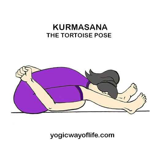 KURMASANA - Tortoise Pose