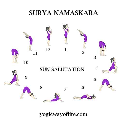 Surya Namaskara The Sun Salutation