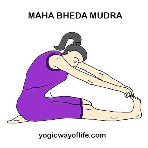 Maha bheda Mudra