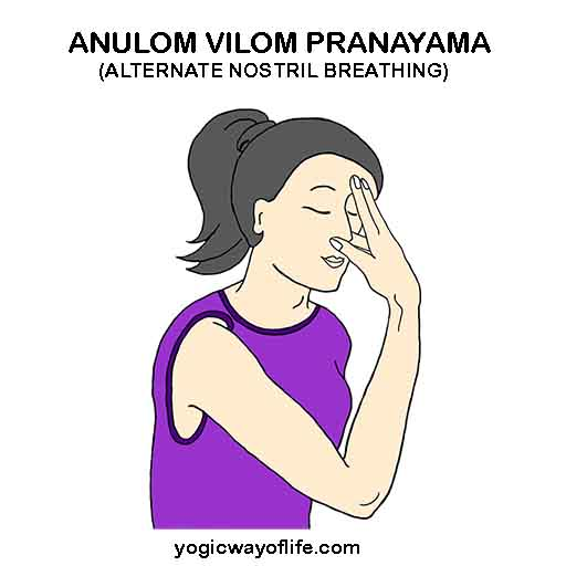 Anulom Vilom Pranayama - Alternate Nostril breathing