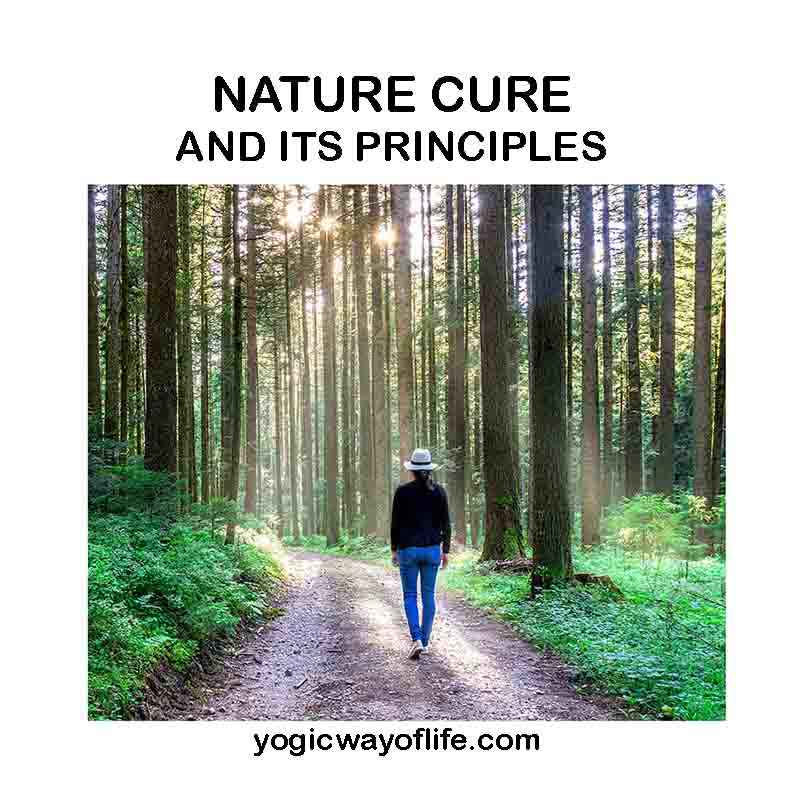 Nature cure and its principles