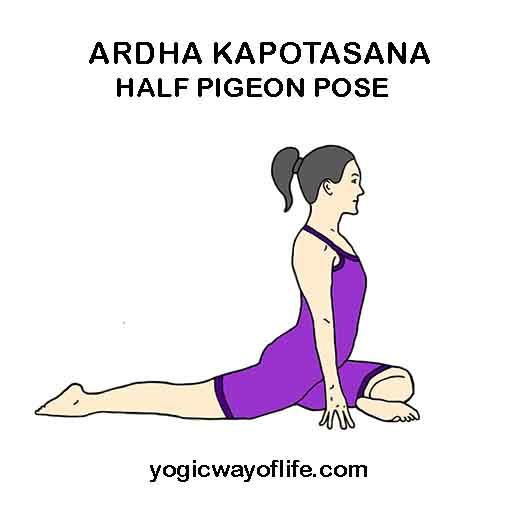Ardha Kapotasana - Half Pigeon Pose