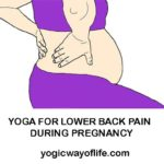 Yoga for Lower back Pain during Pregnancy