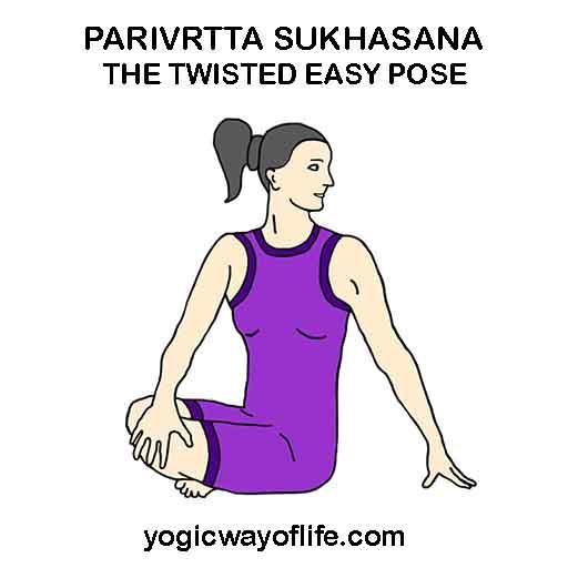 Parivrtta Sukhasana - Twisted easy pose