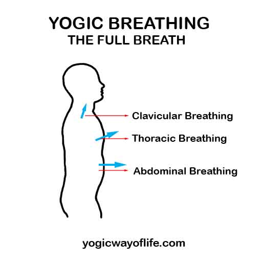 Yogic Breathing - The Art of Natural Breathing