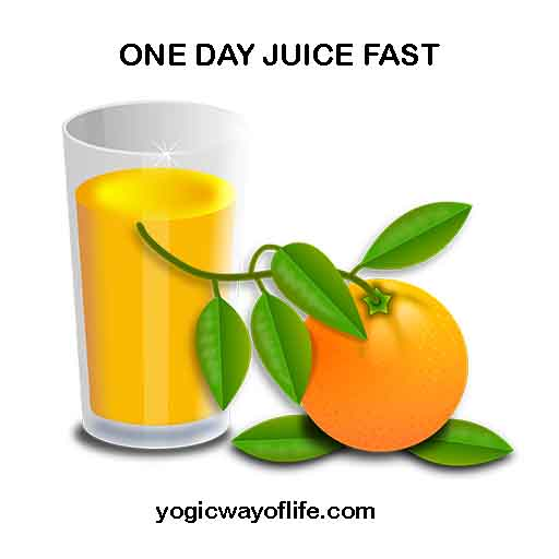 One Day Juice Fast