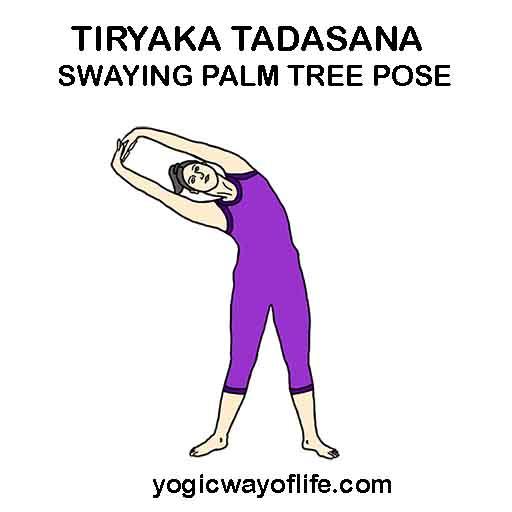 TIRYAKA TADASANA