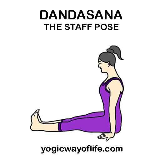 Dandasana - Staff Pose