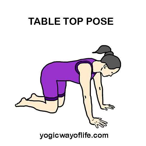 Table Top Pose - Yoga Asana