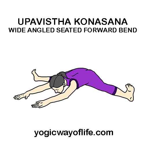 Upavistha Konasana - Wide Angle Seated Forward Bend Pose