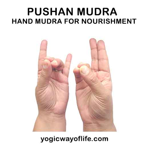Pushan Mudra - Hand gesture for Digestion and Nourishment