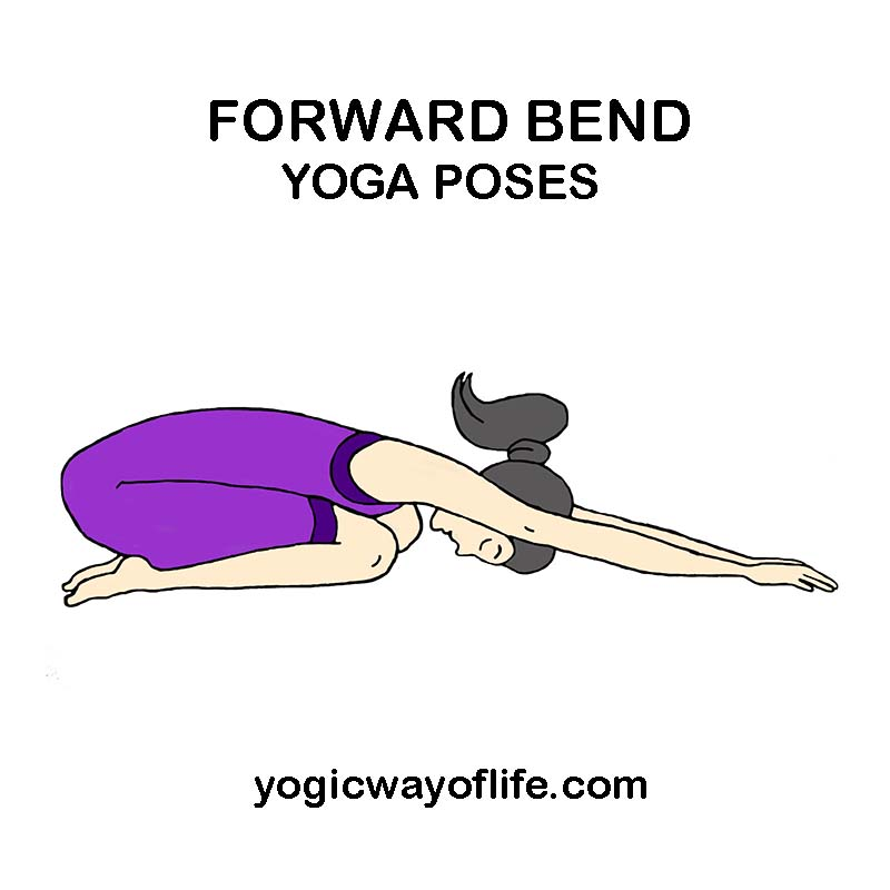 Forward Bend Yoga Asanas or Poses