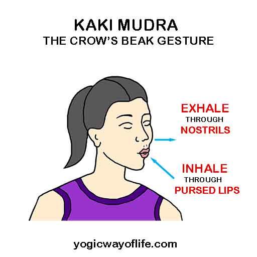 Kaki Mudra - The Crow's Beak Gesture