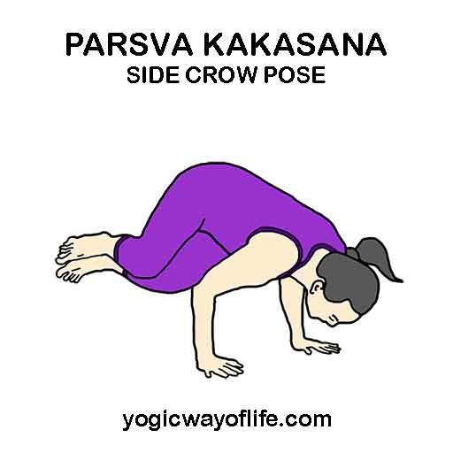Parsva Kakasana - Side Crow Pose