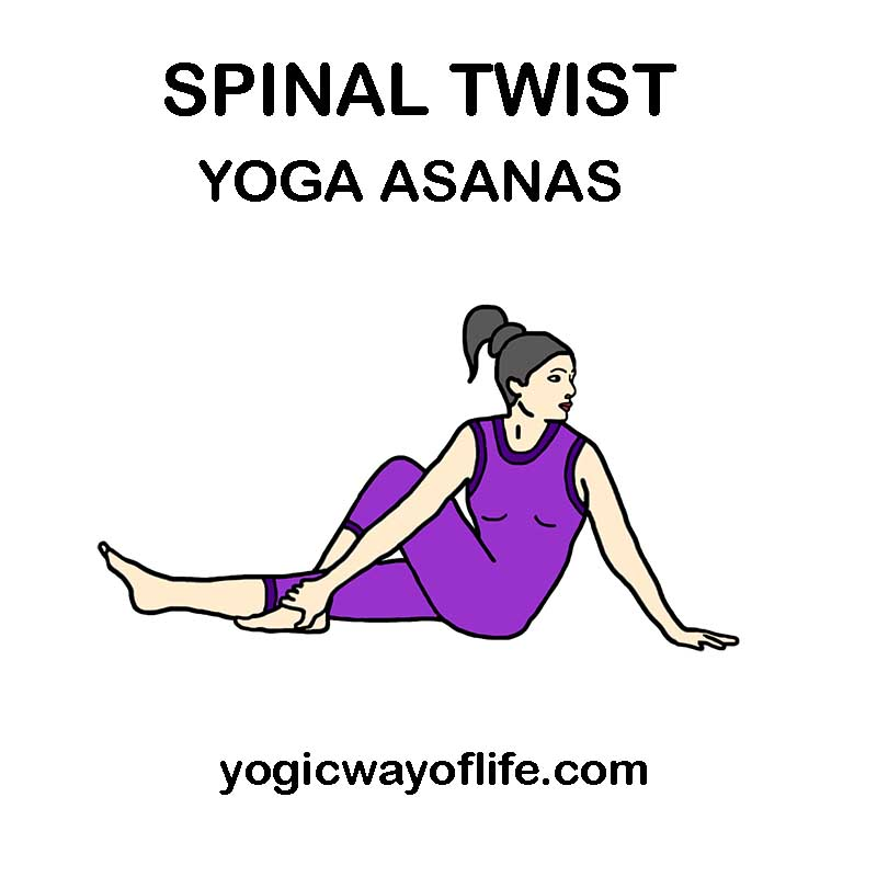 Spinal Twist Yoga Asanas or Poses