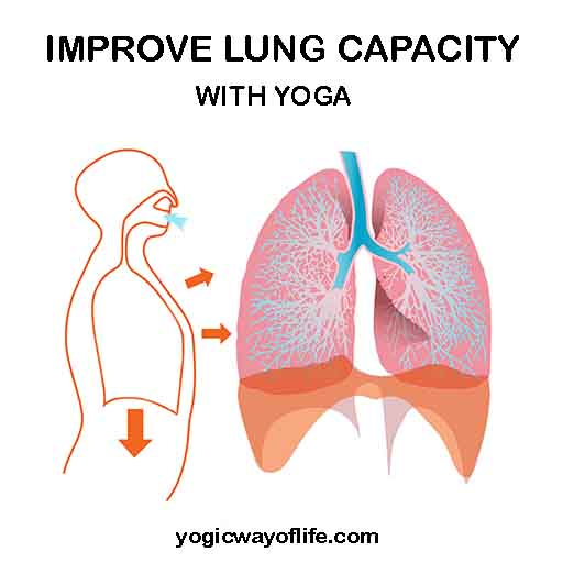 Yoga to Improve Lung Capacity